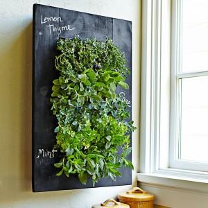 Grovert-Living-Wall-Planter